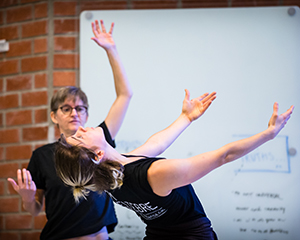 Dance Didactics for Professional Dance Education